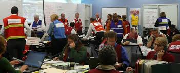What role and responsibilities does the government have in emergency planning?